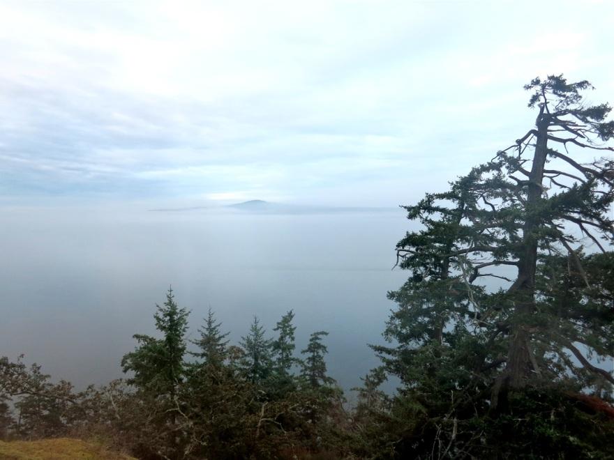 silver-ocean